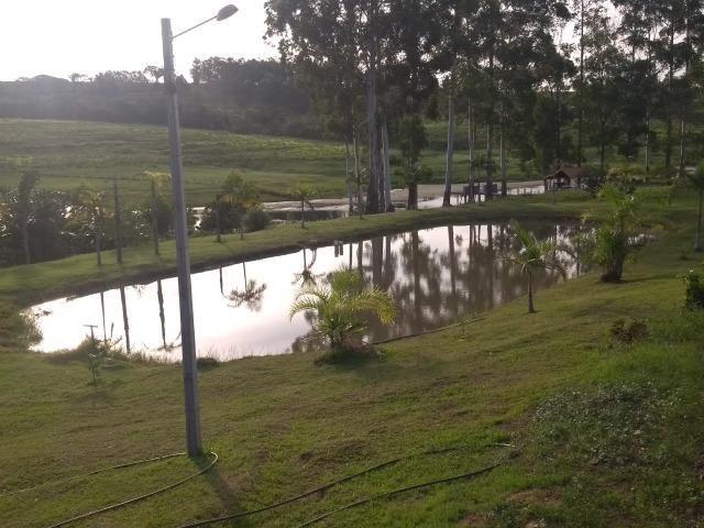 Vende-se Chácara a Beira da Represa em Carlópolis PR - Foto 16