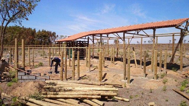 madeira de eucalipto para curral - Foto 4