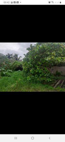 Vendo terreno em Cajueiro, são João da Barra  - Foto 6