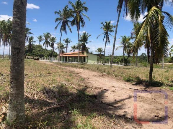Fazenda com 3 dormitórios à venda, 530000 m² por R$ 1.400.000 - Centro - Curral de Cima/PB - Foto 12