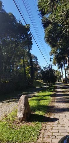 Terreno em Condomínio Fechado Monte Berico / Caxias do Sul - Foto 5