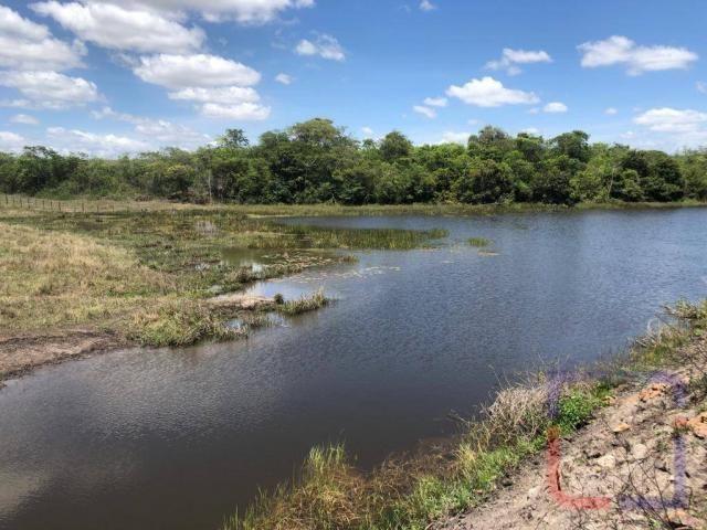 Fazenda com 3 dormitórios à venda, 530000 m² por R$ 1.400.000 - Centro - Curral de Cima/PB - Foto 18