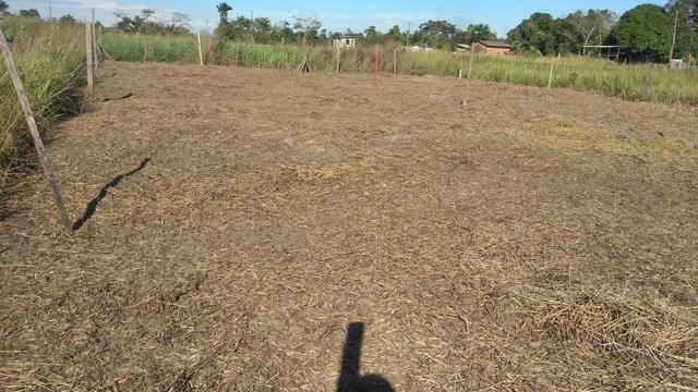 Terreno por 5.00,00 reais - Foto 3