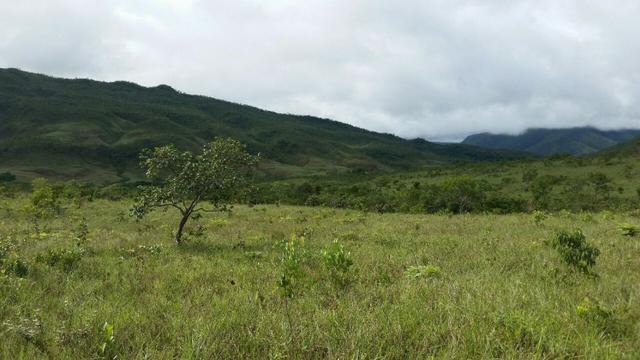 Chácara com área de 4000m², 14 km de Alto Paraíso de Goiás