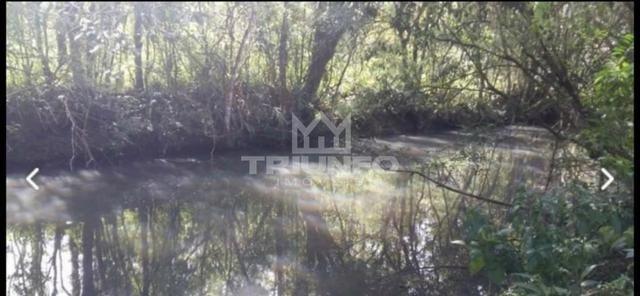 Sítio com rio e mata nativa - Foto 3
