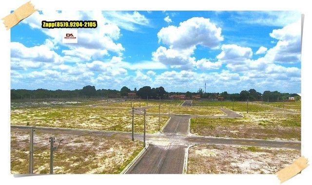 Lotes Terras Horizonte - Venha investir já @!#@ - Foto 3
