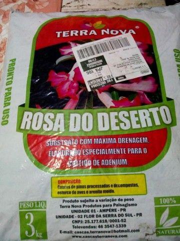 Substrato para Rosa do Deserto