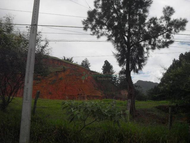 Área corporativa à venda, Vargem Grande, Teresópolis. - Foto 14