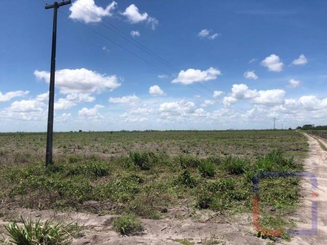 Fazenda com 3 dormitórios à venda, 530000 m² por R$ 1.400.000 - Centro - Curral de Cima/PB - Foto 8