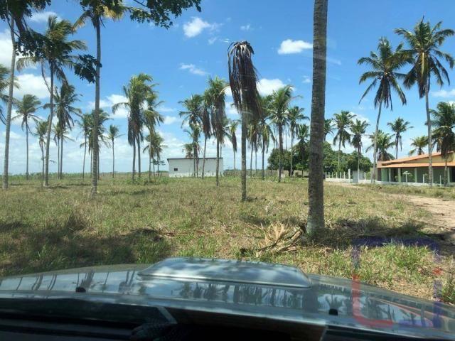 Fazenda com 3 dormitórios à venda, 530000 m² por R$ 1.400.000 - Centro - Curral de Cima/PB - Foto 11