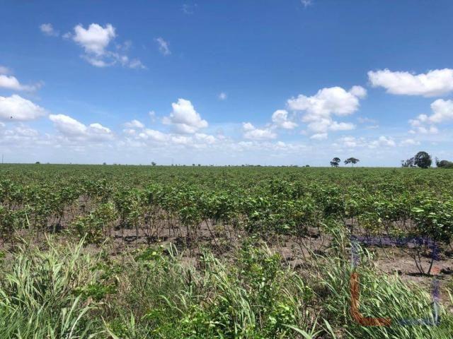 Fazenda com 3 dormitórios à venda, 530000 m² por R$ 1.400.000 - Centro - Curral de Cima/PB - Foto 2