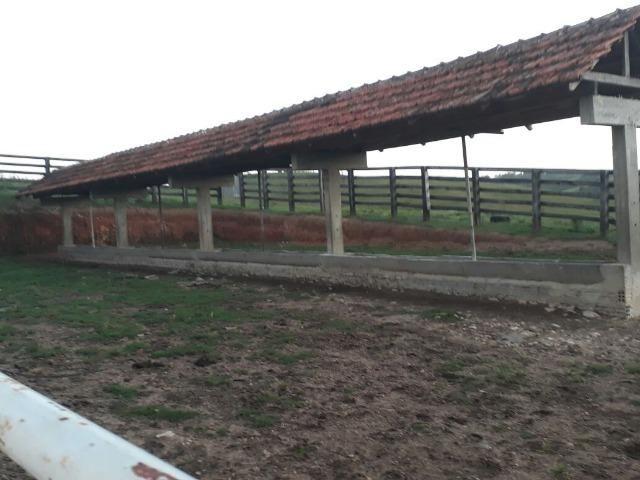 Fazenda completíssima 450 hectares