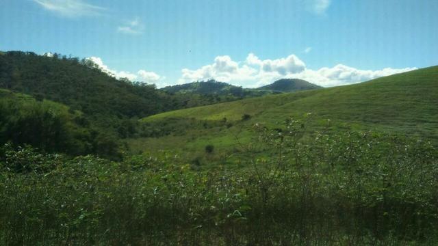 Fazenda em Cachoeira de Minas - Foto 5