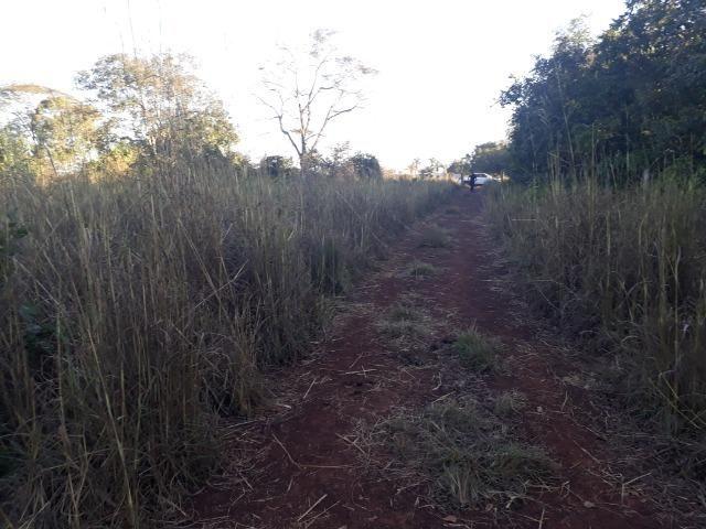 Chácara muito boa a 9 km de Acorizal - Foto 9