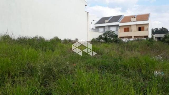 Terreno à venda em Guarujá, Porto alegre cod:TE1432 - Foto 9