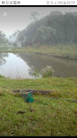 Chácara jardim das hortencias - Foto 2