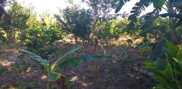Cachoeiras de Macacu terra excelente para produção - Foto 8