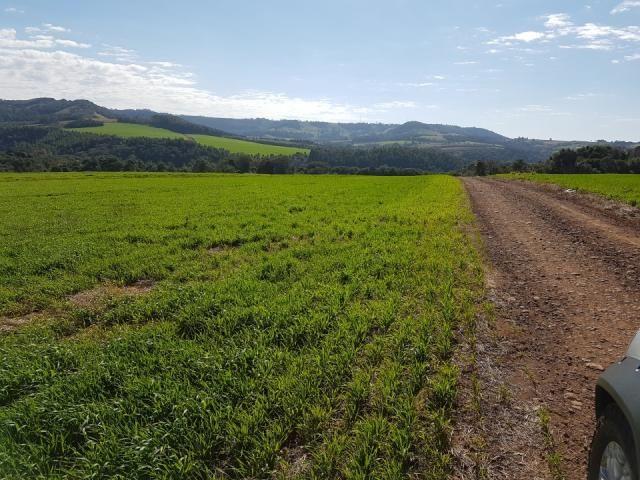 8345 | Sítio à venda em Rural, Santa Maria - Foto 4