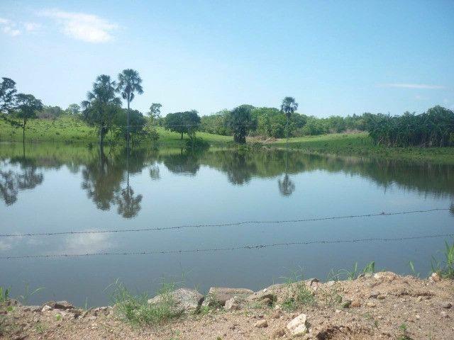 108 alqueires em Amaralina, próximo a Mara Rosa GO, plana e boa de água!! - Foto 5