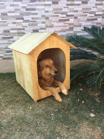 Casa pra cachorro ou gato (TAM. 2) - Foto 3