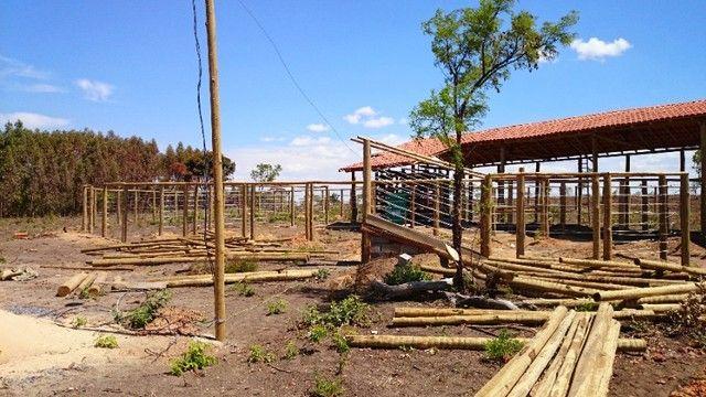 madeira de eucalipto para curral - Foto 3