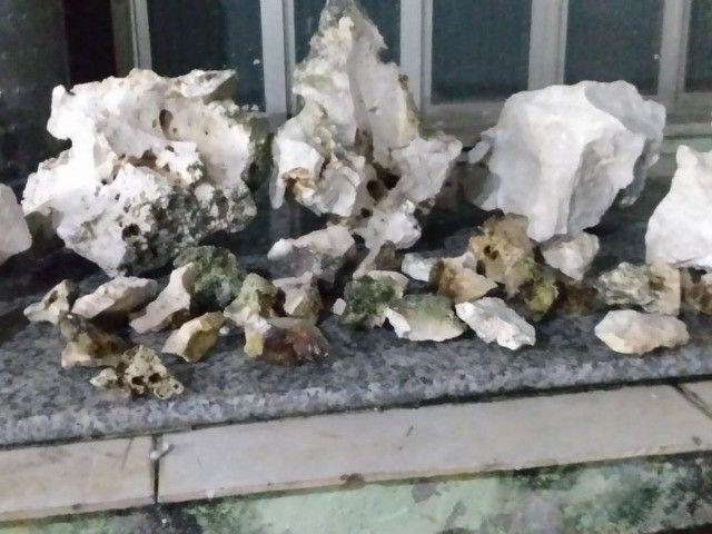 rochas sanzibar para aquario de água doce ou salgada - Foto 3