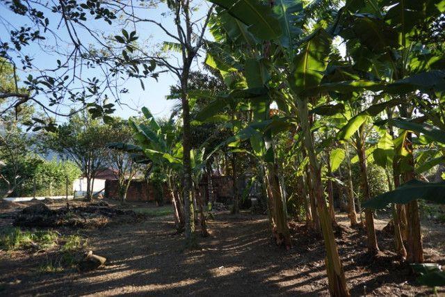 Vendo/troco Casa/Chácara - Angra dos Reis - Foto 20
