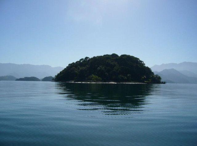 Ilha Jose Andre com 56.000 m2 em Angra dos Reis - RJ - Foto 15