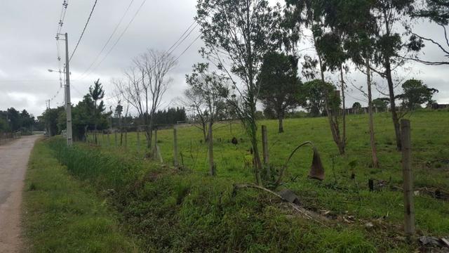 Chácara/bem localizada, de frente para Rodovia BR277 só R$3.499.000,00 - Foto 15