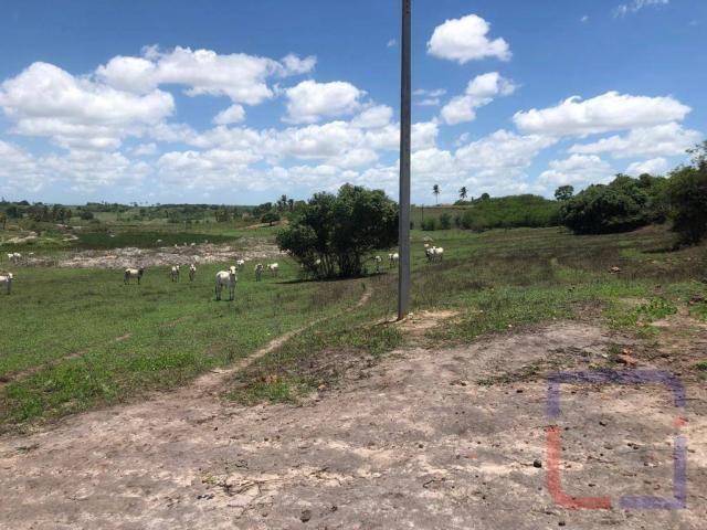 Fazenda com 3 dormitórios à venda, 530000 m² por R$ 1.400.000 - Centro - Curral de Cima/PB - Foto 20