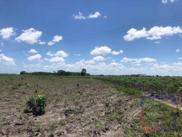 Fazenda com 3 dormitórios à venda, 530000 m² por R$ 1.400.000 - Centro - Curral de Cima/PB - Foto 9