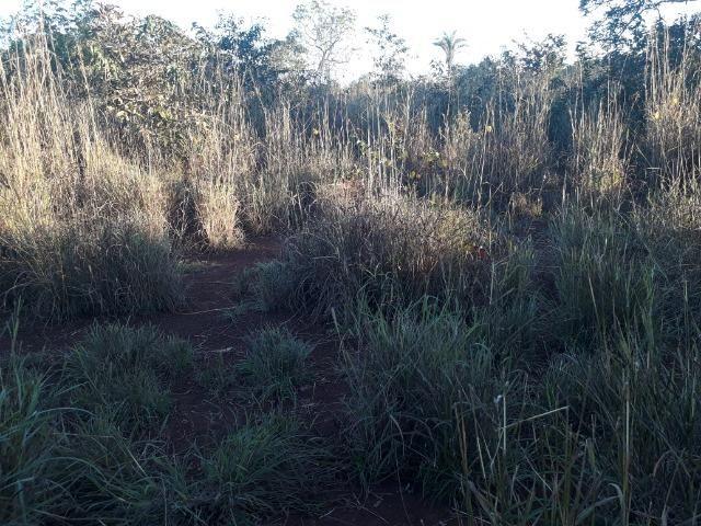 Chácara muito boa a 9 km de Acorizal - Foto 20