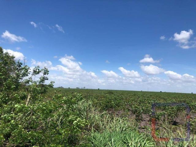 Fazenda com 3 dormitórios à venda, 530000 m² por R$ 1.400.000 - Centro - Curral de Cima/PB - Foto 3