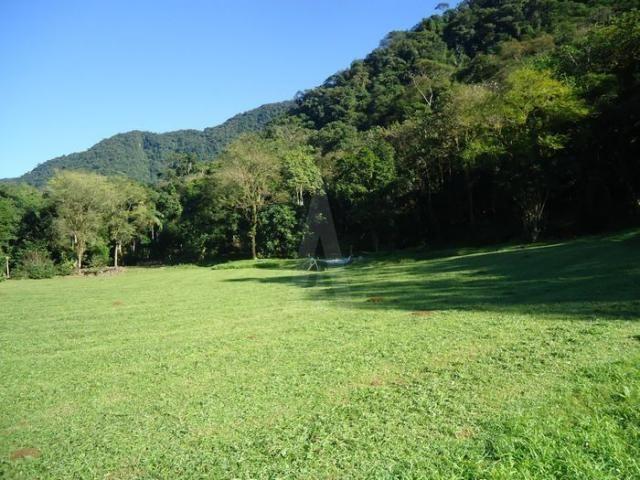 Chácara à venda em Pirabeiraba, Joinville cod:18298N - Foto 13