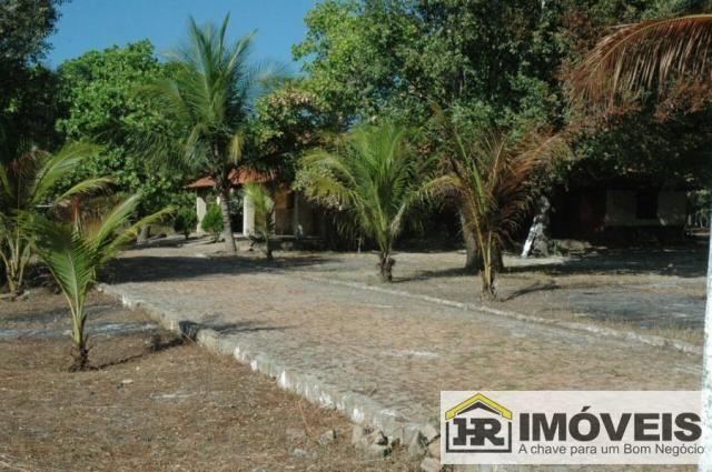 Sítio / Chácara para Venda em Barras, 3 dormitórios, 1 suíte, 2 banheiros, 3 vagas - Foto 4