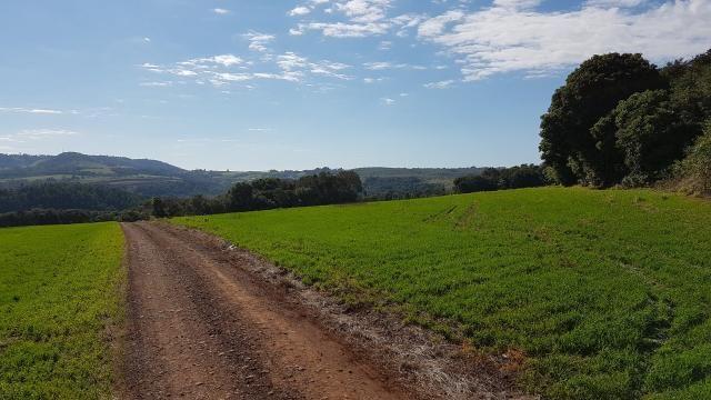 8345 | Sítio à venda em Rural, Santa Maria - Foto 6
