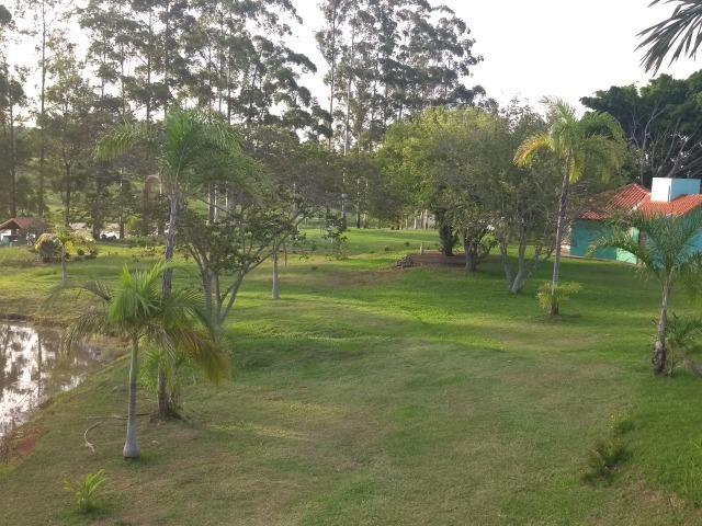 Vende-se Chácara a Beira da Represa em Carlópolis PR - Foto 19