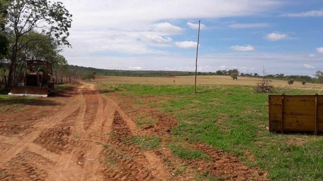 Excelente fazenda dupla aptidão - Foto 9