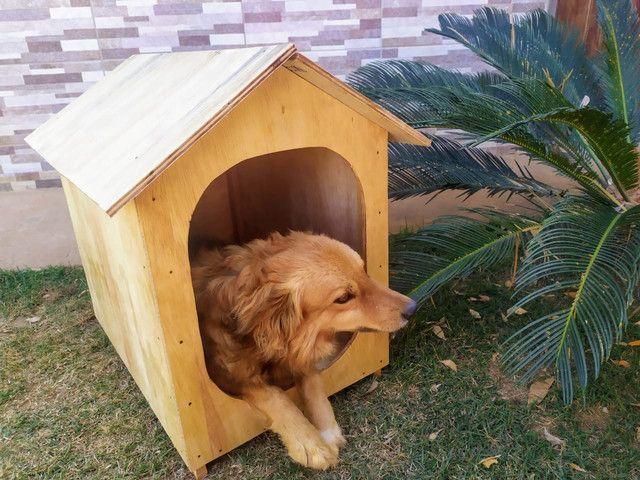 Casa pra cachorro ou gato (TAM. 2) - Foto 4