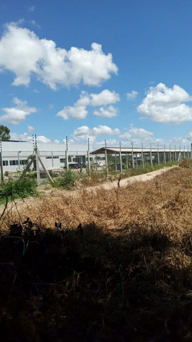 Vendo terreno sooretama 300mt troco no carro  - Foto 4