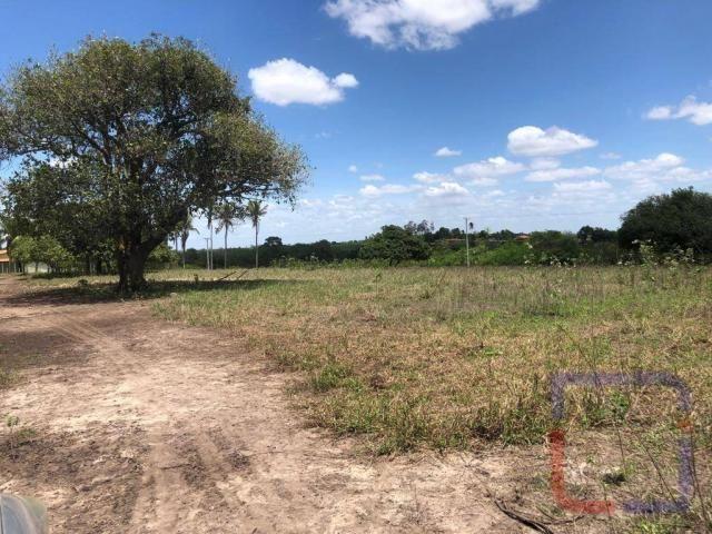 Fazenda com 3 dormitórios à venda, 530000 m² por R$ 1.400.000 - Centro - Curral de Cima/PB - Foto 13