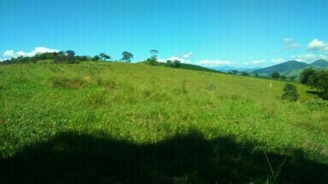 Fazenda em Cachoeira de Minas - Foto 7