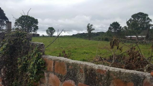 Chácara/bem localizada, de frente para Rodovia BR277 só R$3.499.000,00 - Foto 6