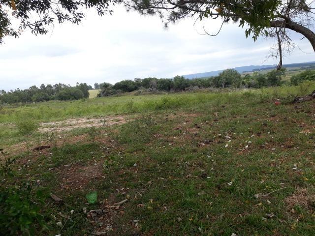 Área 25.5 hectares - Foto 4