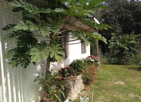 Vendo ou troco chácara em Quitandinha PR - Foto 2