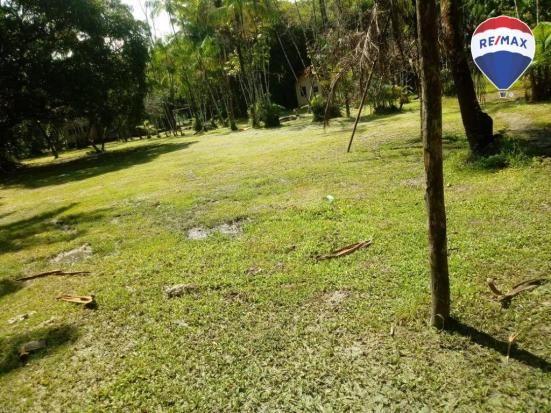 Terreno BR 316- Frente a Heineken com  87.000 m² - Região Metropolitana Belém/PA - Foto 6