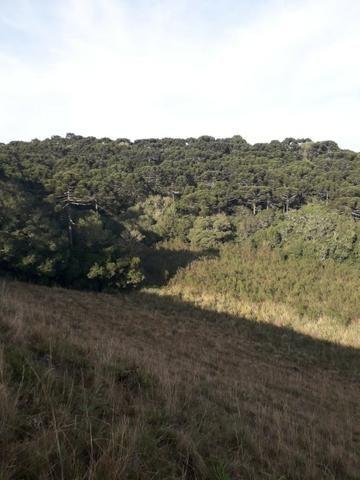 Para você que procura descanso e tranquilidade junto as belezas da serra gaucha - Foto 3