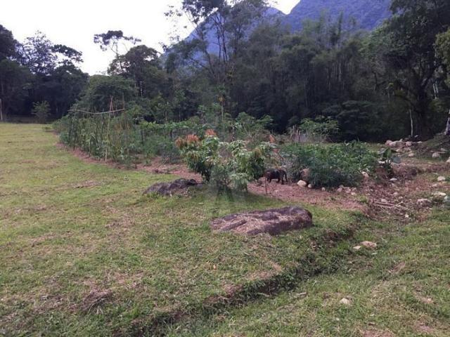 Chácara à venda em Pirabeiraba, Joinville cod:18298N - Foto 15