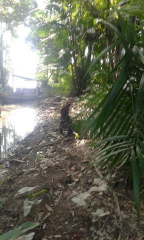 Terreno de frente pro rio maguari em outeiro - Foto 2