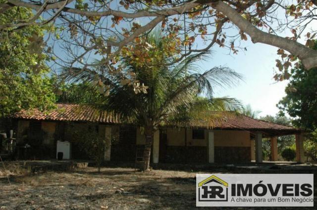 Sítio / Chácara para Venda em Barras, 3 dormitórios, 1 suíte, 2 banheiros, 3 vagas - Foto 8